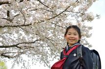 野瀬ほのかちゃん桜バック